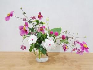 flower(2021.10.05)